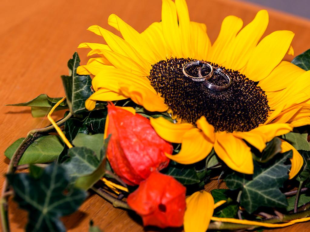 KatjaSteiger_Photography_Hochzeitsringe